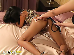 Two lustful tgirls goes crazy about each other