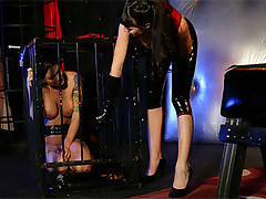 A hot lesbian mistress punishing her slave with pleasure