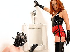 Babe wearing a mouth gag cleaning the dirty toilet fetish