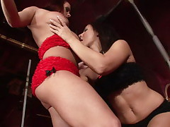 Amazing brunette harlot in fishnets gets clit licked by a cutie lesbian
