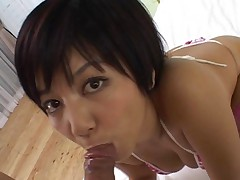 Meguru Kosaka looks into the camera as she sucks his cock