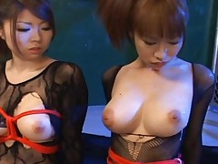 Emiri Asian dolls tied up and titty electrodes attached