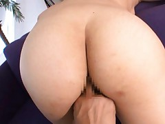 Ria Mamu Asian with firm chest sucks boner and gets fingered