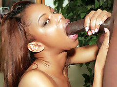 Horny black cutie Marie Luv goes down to suck a cock and got butt fucked and jizzed live