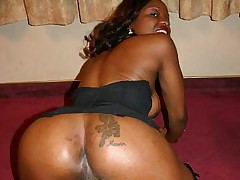 Sexy ebony Brandi Coxxx showing off her juicy ass and gets cock plowed in her pussy slit
