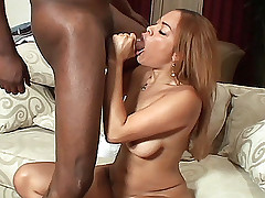 Stacked ebony Jenna Brooks working a big black dick with her lips and humping it on top