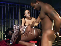 Nasty babe Jada Fire and her sexy friend share big cocks and get fucked badly in this wild porn flick
