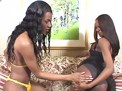 Hot ebony trannies Carmen and Keyle are a suck and fuck tag team over a horny guys stiff cock