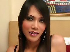 Shemale hottie Bew wiggling her cute behind on cam